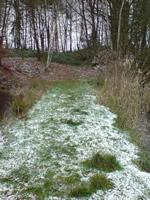 Naturteichanlage im Winter